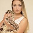 De Grote Reptielenshow